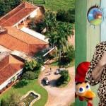 MST invade fazenda de cafetão que homenageou Moro e Cármen Lúcia