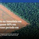 Desmatamento cresce 60% em 2019. O acordo Mercosul-UE, assim, vai para o brejo
