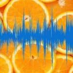 Por que aparecem agora os áudios do Queiroz sumido?