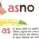 """Bolsonaro e sua """"pedagogia da estupidez"""""""