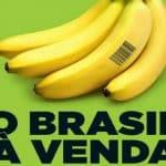No El País, a 'Doutrina Guedes' que põe o Brasil à venda