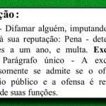 Bolsonaro, o difamador, tem de responder pelo seu crime