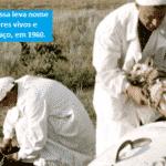 Vacina russa tem segredos, para o bem e para o mal